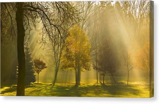 Beaming Morning Canvas Print