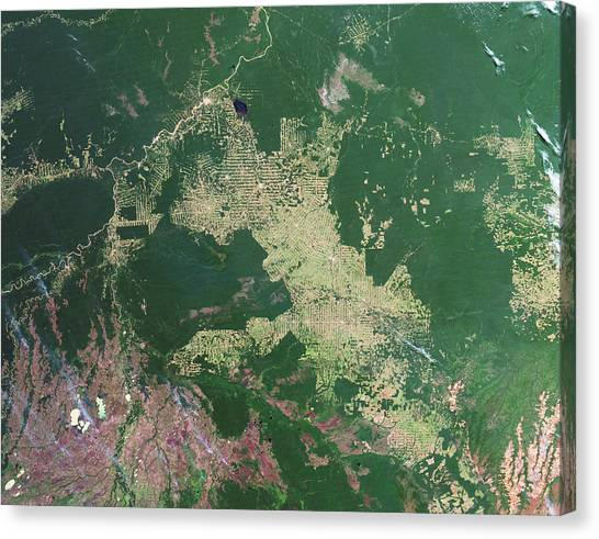 Deforestation Canvas Print - Deforestation In The Amazon by Nasa Earth Observatory