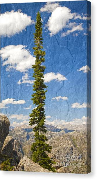 Teton National Forest Canvas Print - Rugged Wind River Range - Where Solitude Rules by John Stephens