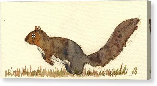 Squirrel Canvas Print - Squirrel by Juan  Bosco