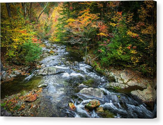 Stream Great Smoky Mountains Painted Canvas Print