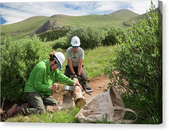 Saws Canvas Print - Volunteers Maintaining Hiking Trail by Jim West