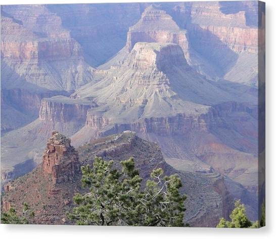 50 Shades Of Purple In The Grand Canyon Canvas Print