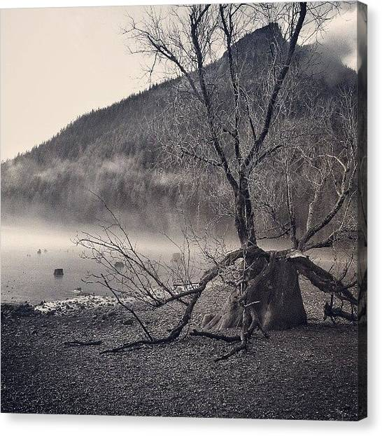 Rattlesnakes Canvas Print - Rattlesnake Lake by Nicole Hammond