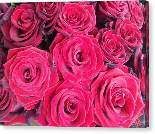 Canvas Print - 51 Red Roses by Christine Rivers