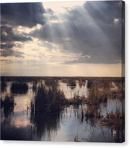 Bayous Canvas Print - Instagram Photo by Kobee King