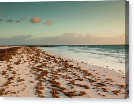 Bahamian Canvas Print - Bahamas, Eleuthera Island, Harbor by Walter Bibikow