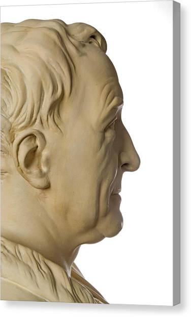 Carl Linnaeus Canvas Print by Natural History Museum, London/science Photo Library