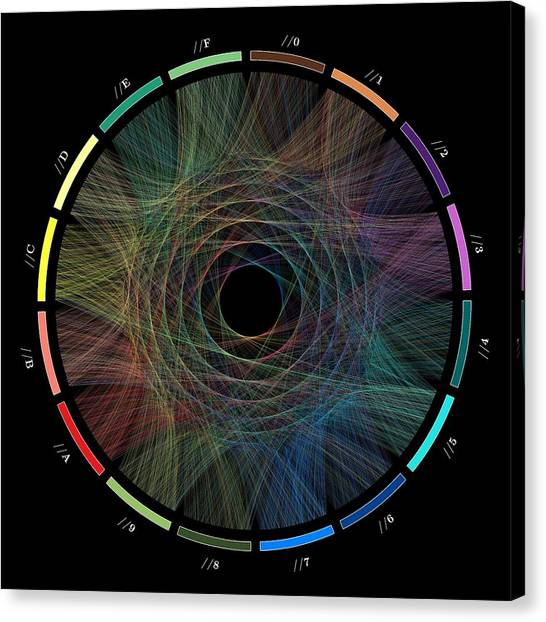 Pi Canvas Print - Flow Of Life Flow Of Pi by Cristian Ilies Vasile