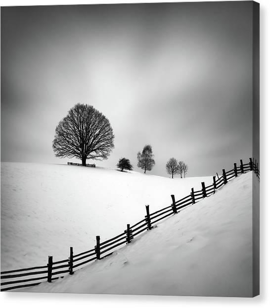 Winter Canvas Print - 6 by Martin Rak