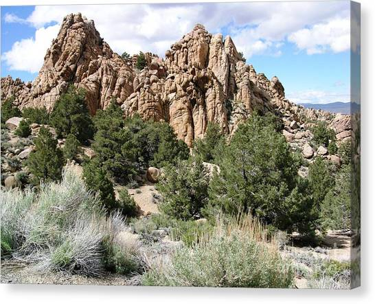 Nevada Desert Canvas Print
