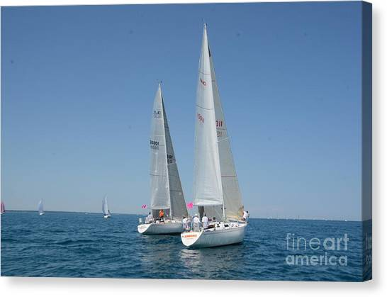Sailboat Race Canvas Print