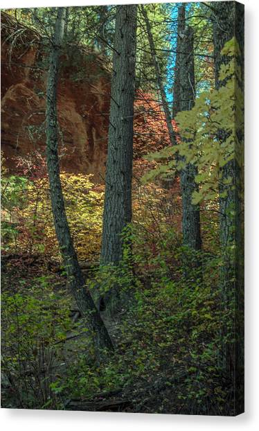 West Fork Fall Color Canvas Print