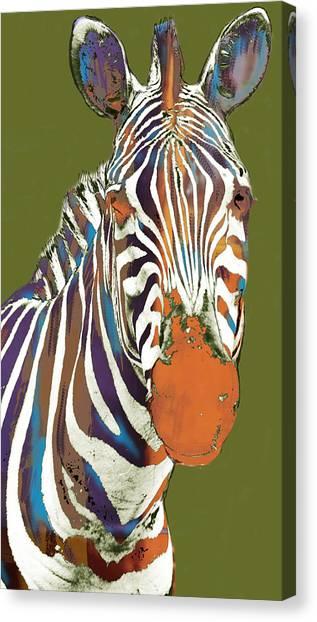 Zebra - Stylised Drawing Art Poster Canvas Print by Kim Wang