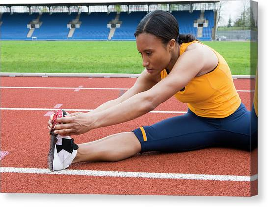 Athlete Stretching Canvas Print by Gustoimages/science Photo Library