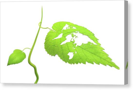 Green Planet Canvas Print by Andrzej Wojcicki/science Photo Library