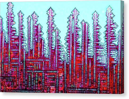 Biochemical Canvas Print - Haematoxylin Crystals by Marek Mis