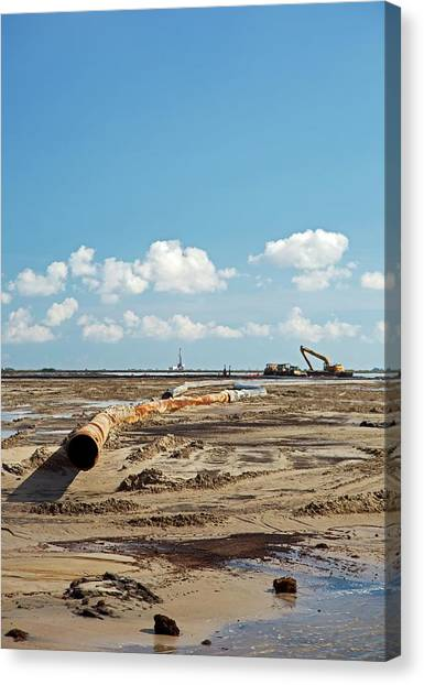 State Hermitage Canvas Print - Louisiana Wetlands Restoration Project by Jim West