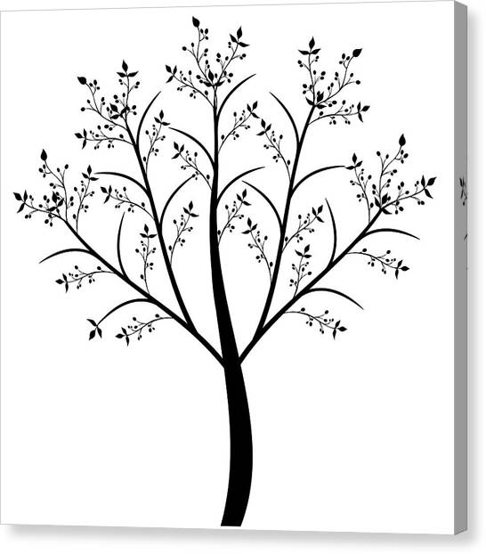 Olive Tree Canvas Print by IB Photography