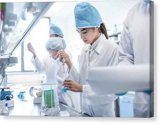 Scientists Working In Lab Canvas Print by Science Photo Library