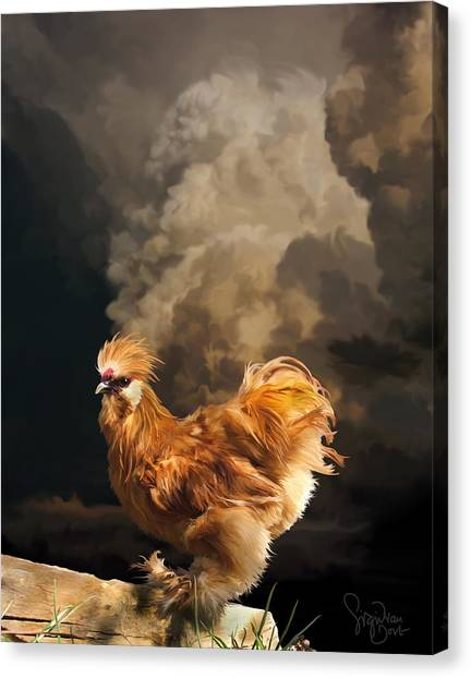 7. Thunder Buff Canvas Print