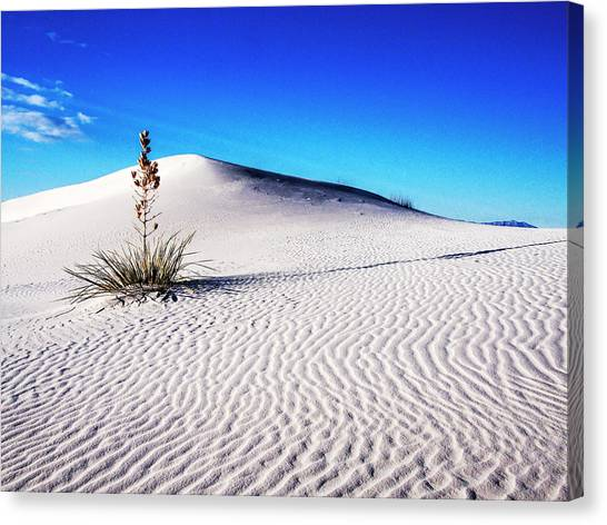 Usa, New Mexico, White Sands National Canvas Print by Terry Eggers