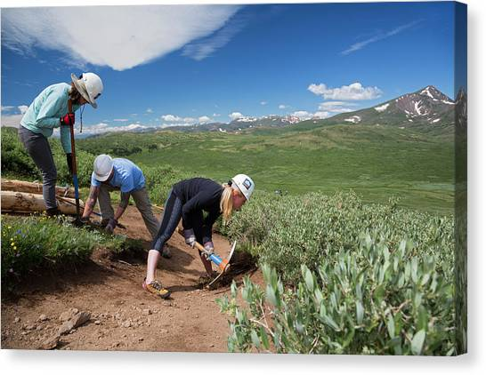 Hard Hat Canvas Print - Volunteers Maintaining Hiking Trail by Jim West