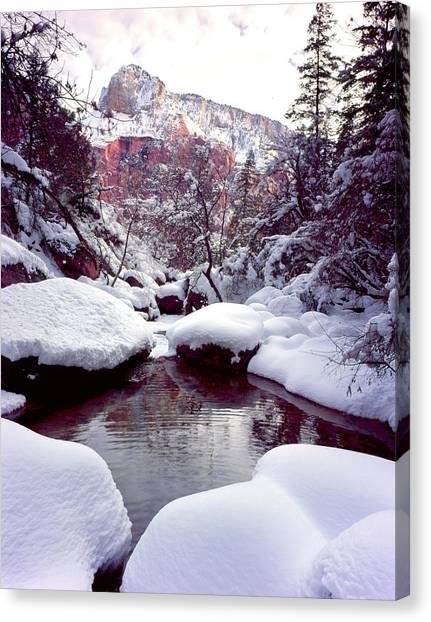 Slickrock Canvas Print - Zion National Park, Utah by Scott T. Smith