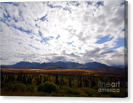Canvas Print featuring the photograph Alaska by Kate Avery