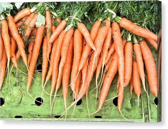 Carrot Canvas Print - Carrots by Tom Gowanlock
