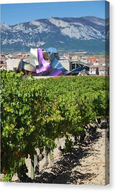 Bodega Canvas Print - Spain, Basque Country Region, La Rioja by Walter Bibikow