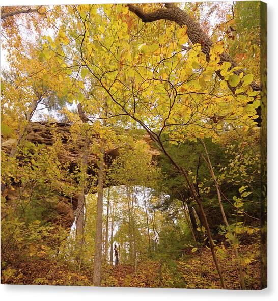 Big South Canvas Print - Tennessee, Usa by Christian Heeb