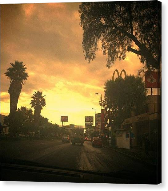 Palm Trees Sunsets Canvas Print - Instagram Photo by Patii Martinez