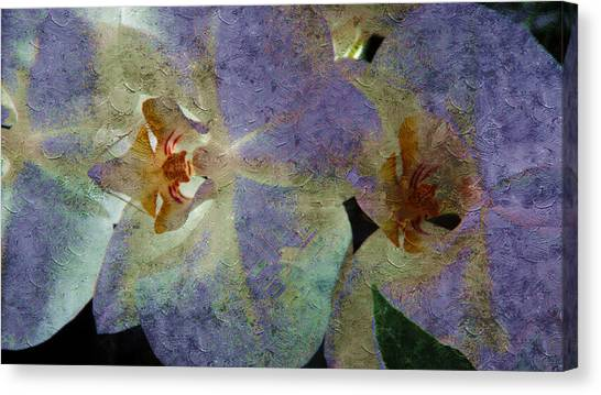 Lavender Orchids Canvas Print
