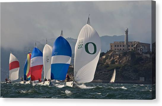 San Francisco Spinnakers Canvas Print by Steven Lapkin