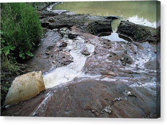 Water Pollution Canvas Print by Robert Brook/science Photo Library