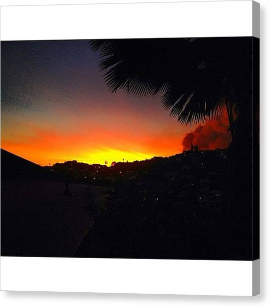 Palm Trees Sunsets Canvas Print - Instagram Photo by Chase Yamada