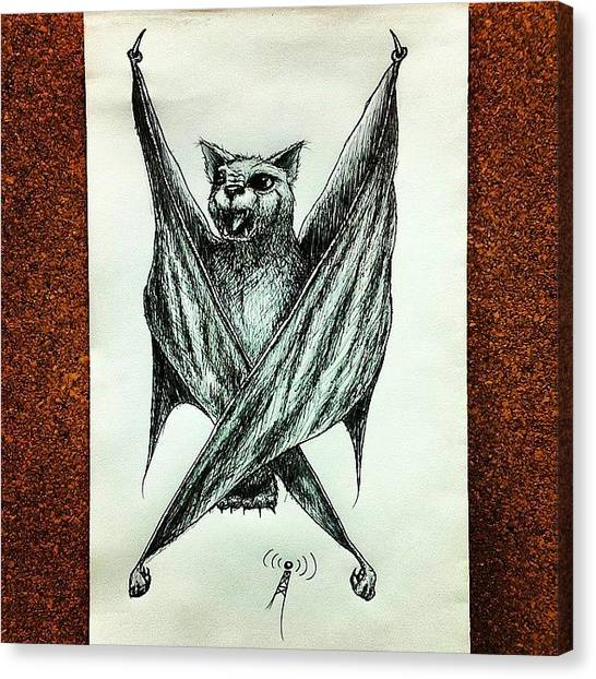 Bat Canvas Print - Instagram Photo by Mark ODwyer