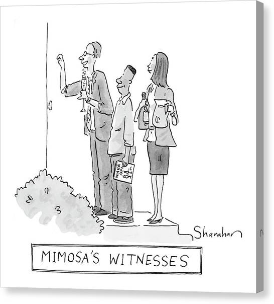 Mimosa's Witnesses Canvas Print