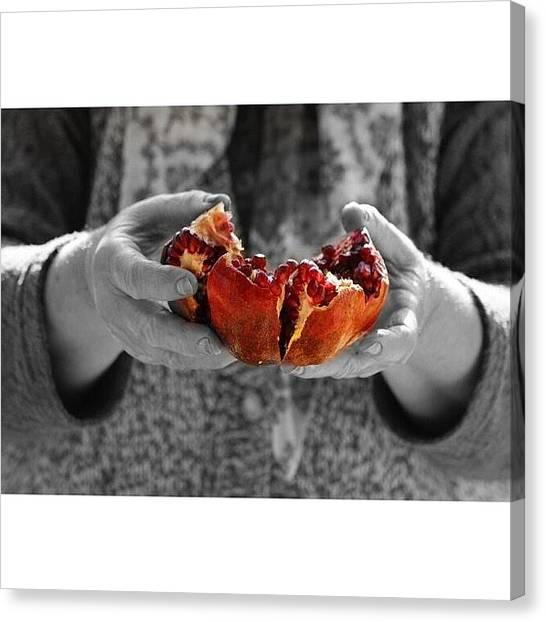 Tropical Birds Canvas Print - Pomegranate by Bilal Sen