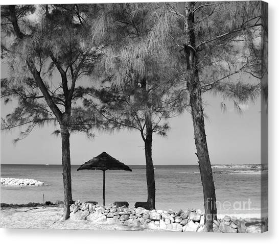 A Bahamas Scene In Black And White Canvas Print