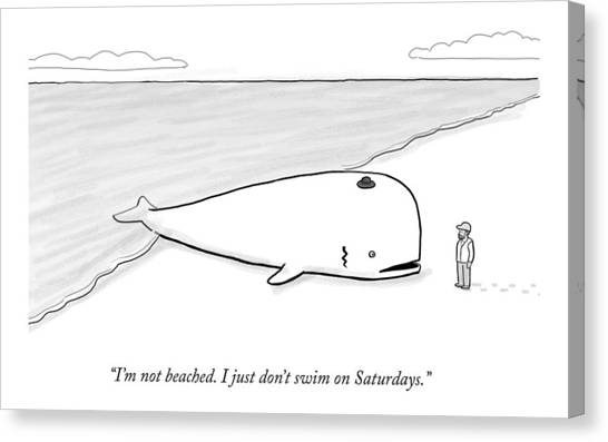 Judaism Canvas Print - A Beached Whale Wears A Hasidic Rabbi Hat by Paul Noth