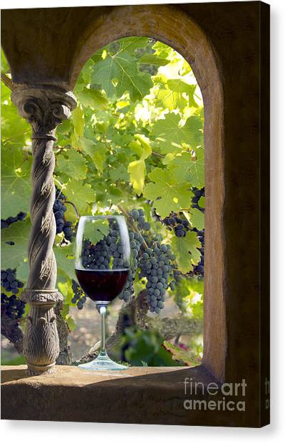 Wine Barrels Canvas Print - A Beautiful Day At The Vineyard by Jon Neidert