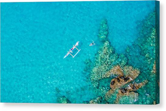 Canvas Print featuring the photograph A Bird's Eye View by Denise Bird