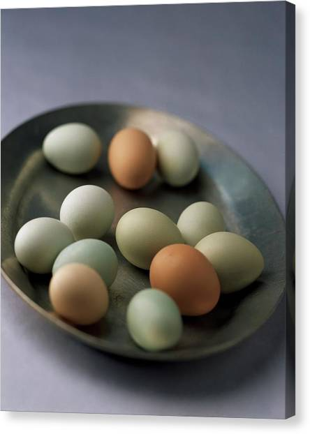 A Bowl Of Eggs Canvas Print