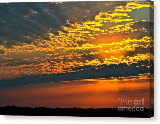 A Brand New Day Canvas Print