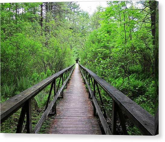 A Bridge To Somewhere Canvas Print