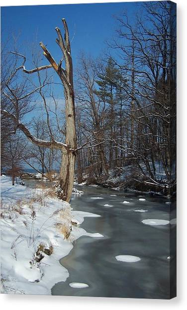 A Bright January Day By A Stream Canvas Print