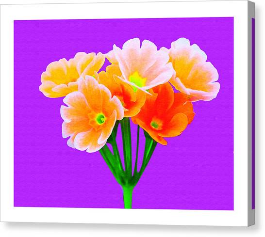 A Bunch Of Beautiful Flowers Canvas Print by Ck Gandhi