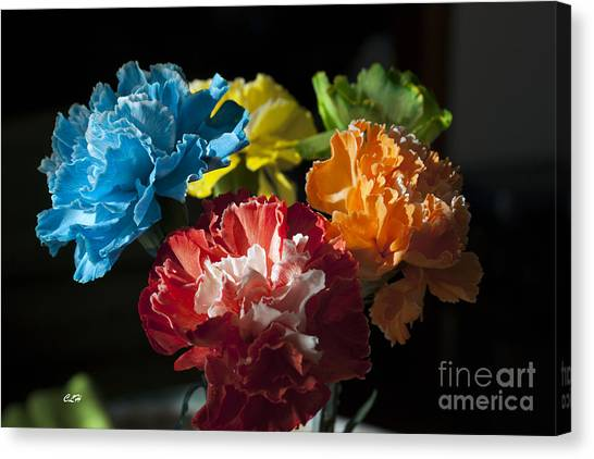 A Bunch Of Beauty Canvas Print